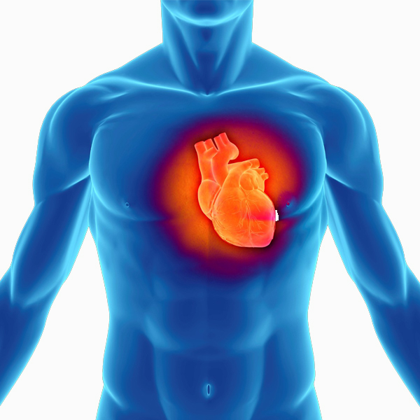 Poly-Cell Benefits for a Healthy Heart